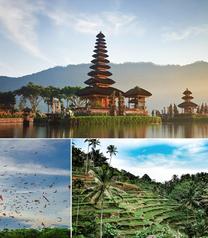 Indonésie 3_modifié-1